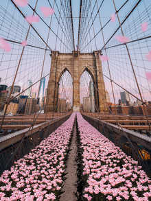 Brooklyn Bridge Tulips